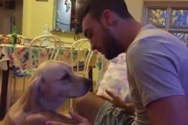 Tak Hanya Pandai Mencintai, Anjing Juga Binatang yang Peka dan Setia