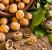 Tangkis Efek Buruk dari Junk Food dengan 3 Makanan Ini