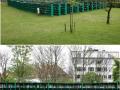 Perpustakaan di taman