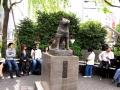 2. Mengunjungi Shibuya & Patung Hachiko