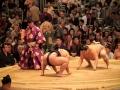 5. Menonton Pertandingan Sumo
