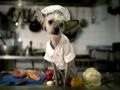 Chini dengan profesinya sebagai koki