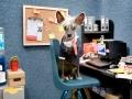 Chini sang pekerja kantoran