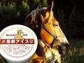 1. Es krim rasa daging kuda
