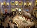 5. Museum Smithsonian