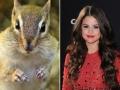4. Selena Gomez – Chipmunk
