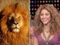 5. Shakira – Singa