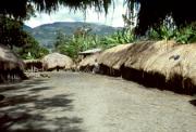 Kehidupan di Lembah Baliem, Papua