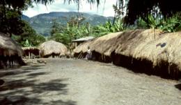 Lembah-Baliem,-Papua-2