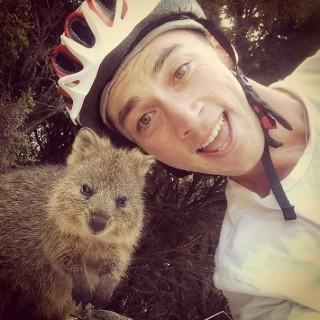 Quokka, Binatang Imut yang Hobi Selfie