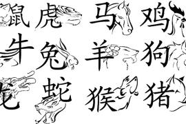 Ramalan Karier 12 Shio di Tahun Monyet Api